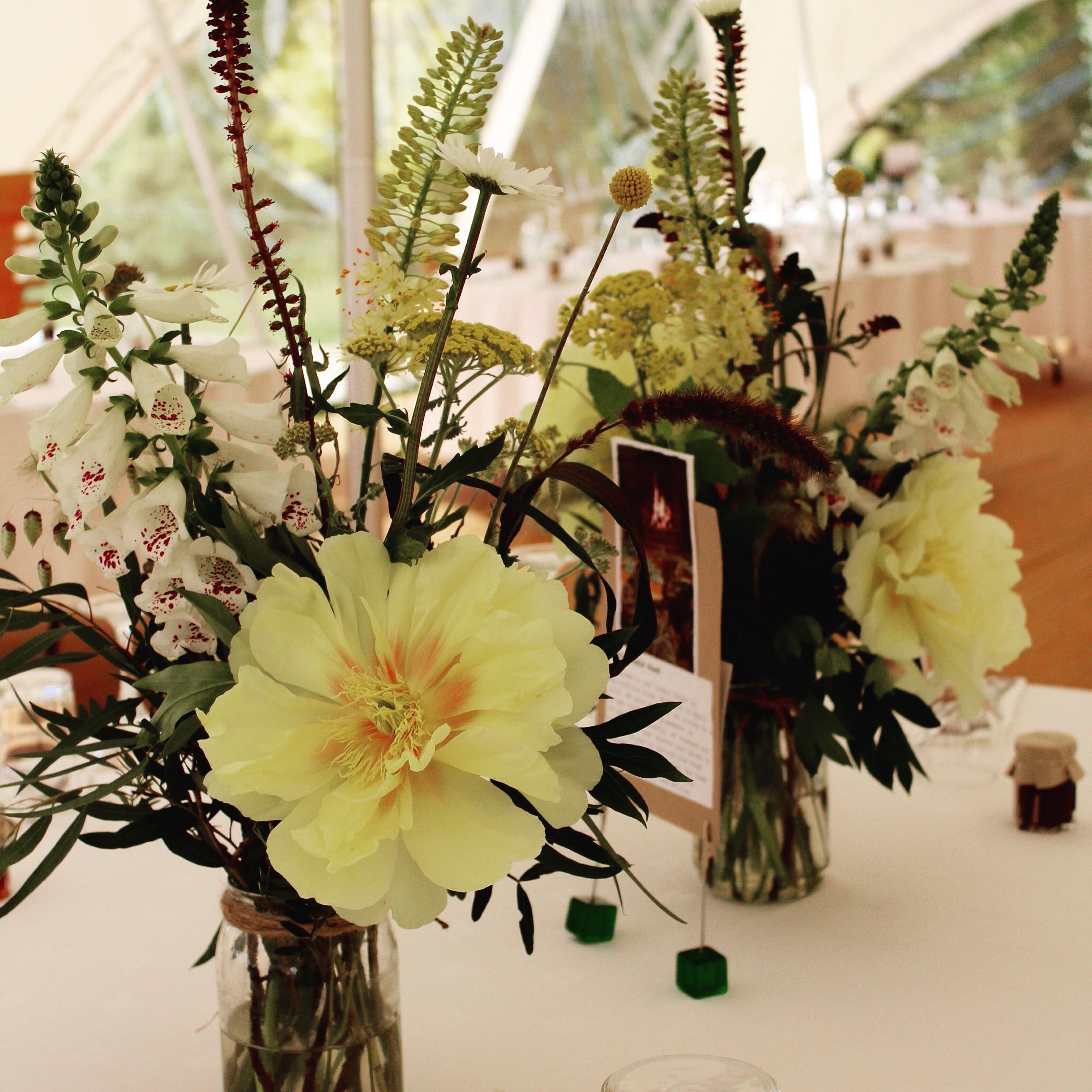 Mount Harry House wedding