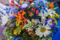 British Flower Week!