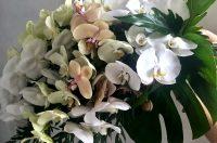Eco friendly florist