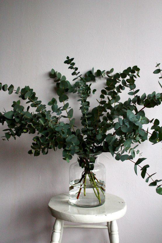 The Eucalyptus Vase Miss Moles Flower Emporium